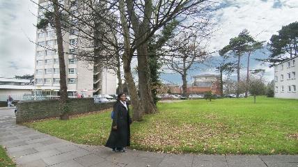 a person walking down a sidewalk next to a tree