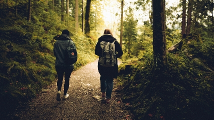 two people walking on a path in the forest