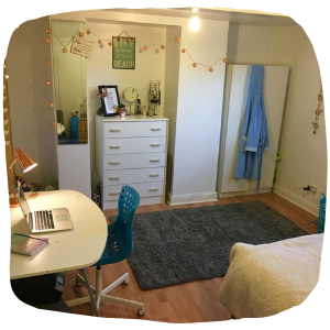a bedroom with a bed, a desk and a rug on the floor